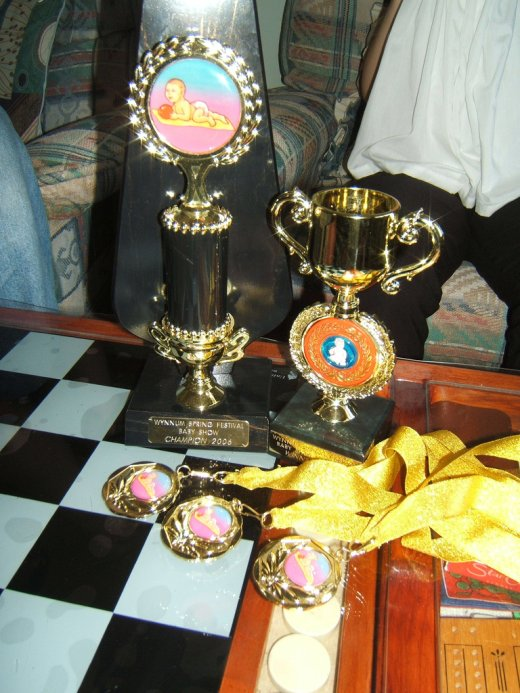 Genevieve's trophies and medals